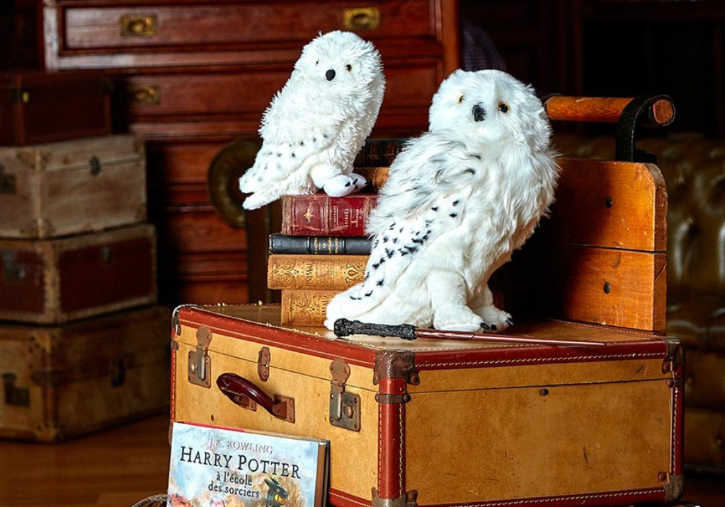 Collection Harry Potter Cyrillus