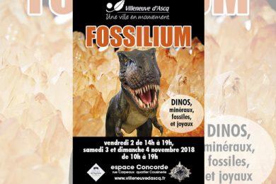 Fossilium 2018