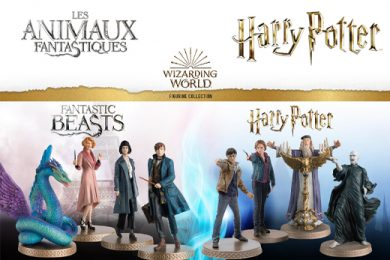 Wizarding World Harry Potter Fantastic Beast